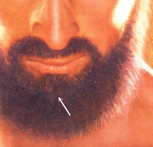 A devil in the beard of Jesus