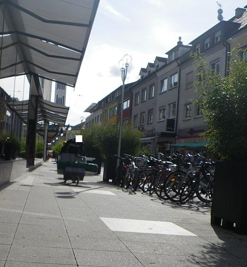 Jehovah's Witnesses in Bruchsal
