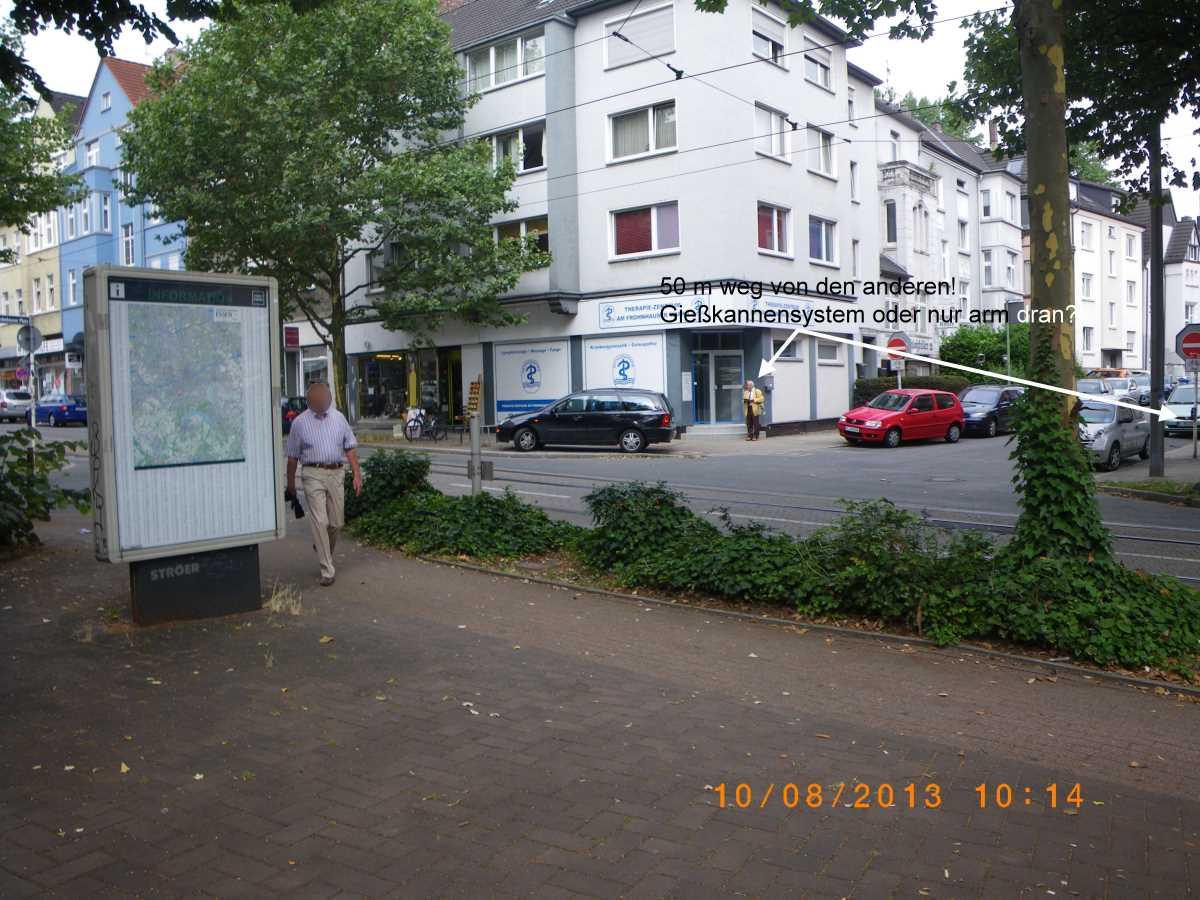 Jehovah's Witnesses casserole in Essen Frohnhausen