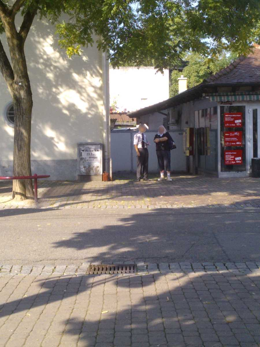 Jehovah's Witnesses in Wiesloch and an Interested Person